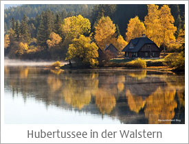 Hubertussee in der Walstern
