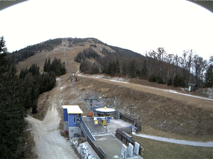 Webcam - Blick auf den Gemeindealpe Gipfel