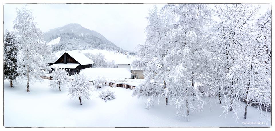 Winterlandschaft im Mariazellerland am 8. Jänner 2012