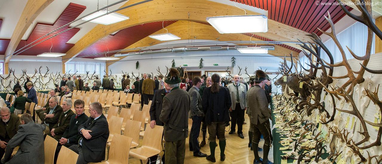 Trophäenschau Mariazell 2013 im Volksheim Gußwerk