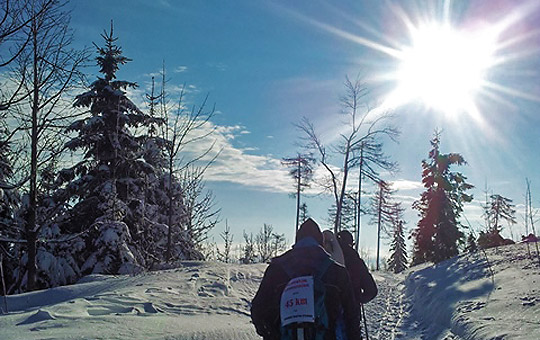 Vulcano Schinkenwanderung Tag 4 - Runter vom Schöggl