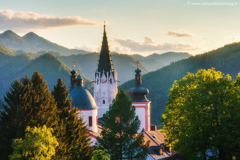 Basilika-Mariazell-Abend-DSC00745
