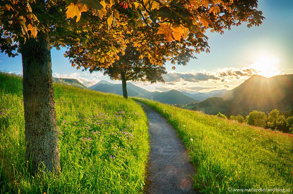 Mariazell-Sonnenuntergang_DSC00670_HDR