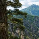 Marienstein - Ausblick in die Ötschergräben