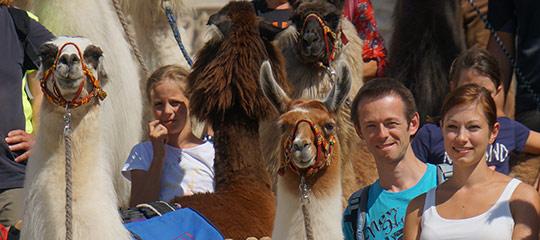 Lama-Trekking-Mariazell_Titel
