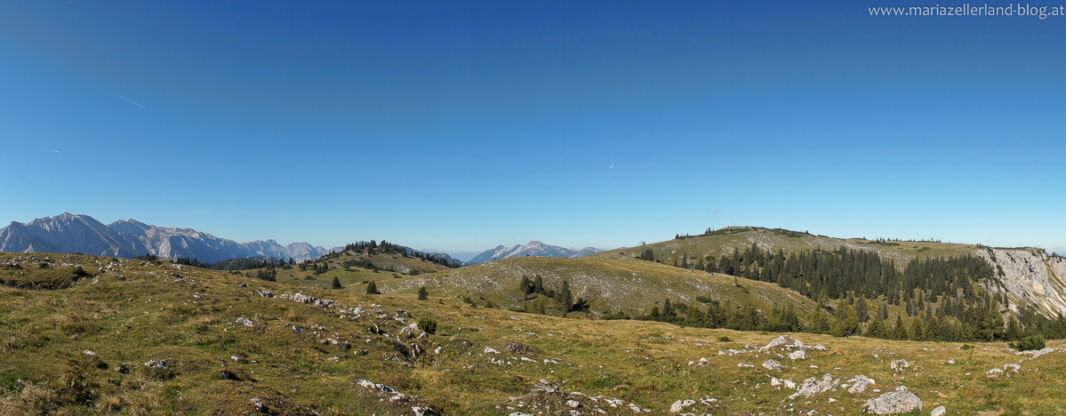 Zeller Staritzen nach dem Aufstieg auf den Ochsenbühel - Rechts das Gipfelkreuz