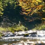 Zellerrain - Vorderötscher - Ötschergräben - Stausee - Mitterbach