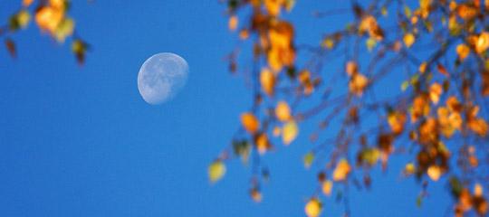 Koeckensattel_Fahrnboden_Ochsenboden_Mond