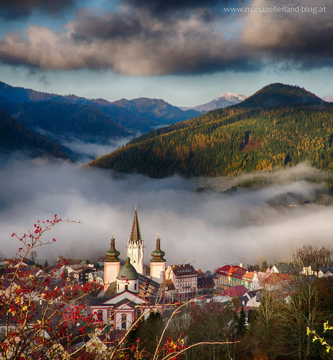 Mariazell_Basilika_Nebel_Oktober