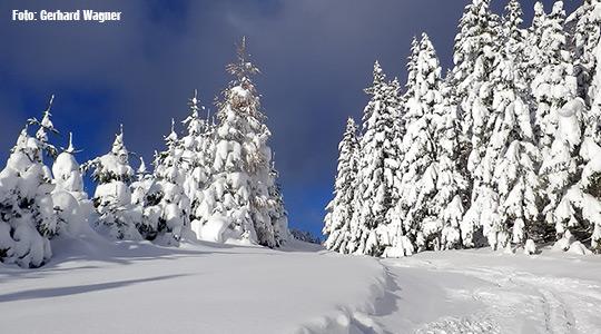 Winter-Mariazellerland-2013-Gerhard-Wagner_Titel_1882