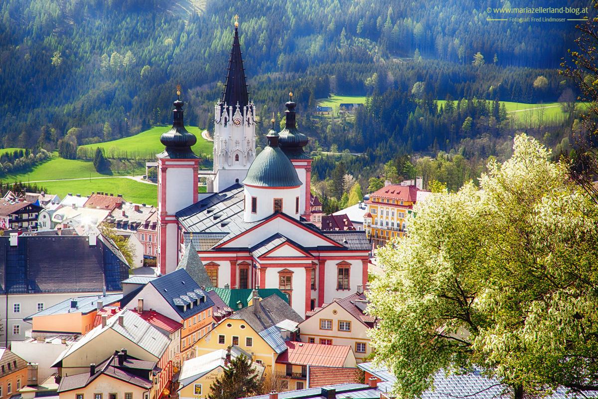 Basilika-Mariazell-Fruehling_0674