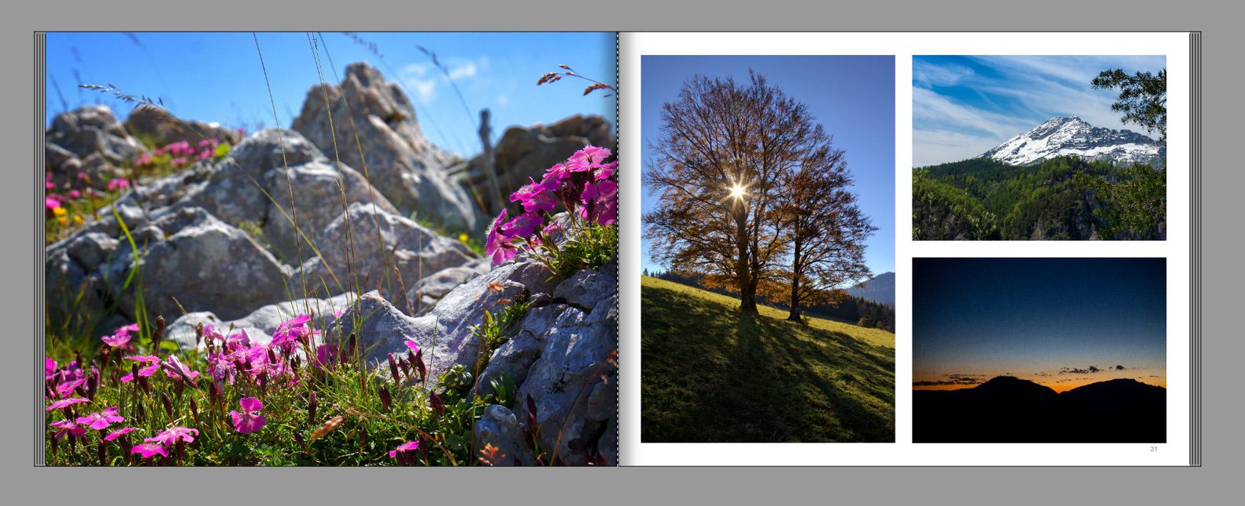 Mariazellerland-Fotobuch-Almen