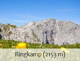 Ringkamp_275_210