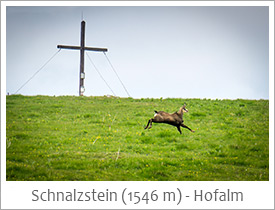 Schnalzstein-Hofalm