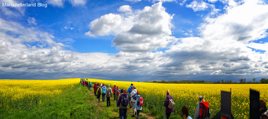 Rapsfeld-Pilgerwanderung_Titel