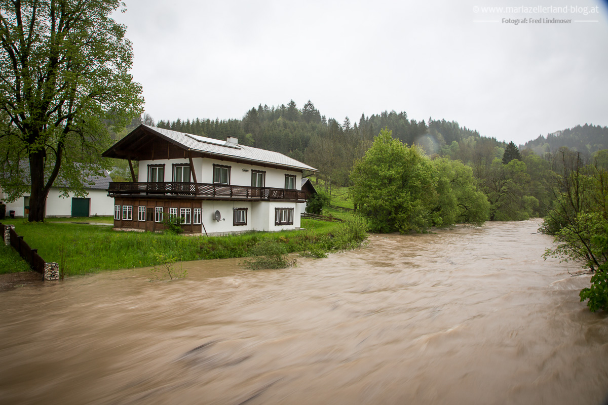 Hochwasser_Mai_2014_Mariazell_IMG_0898