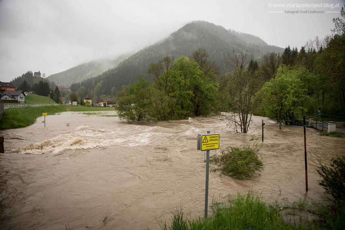 Hochwasser_Mai_2014_Mariazell_IMG_0920