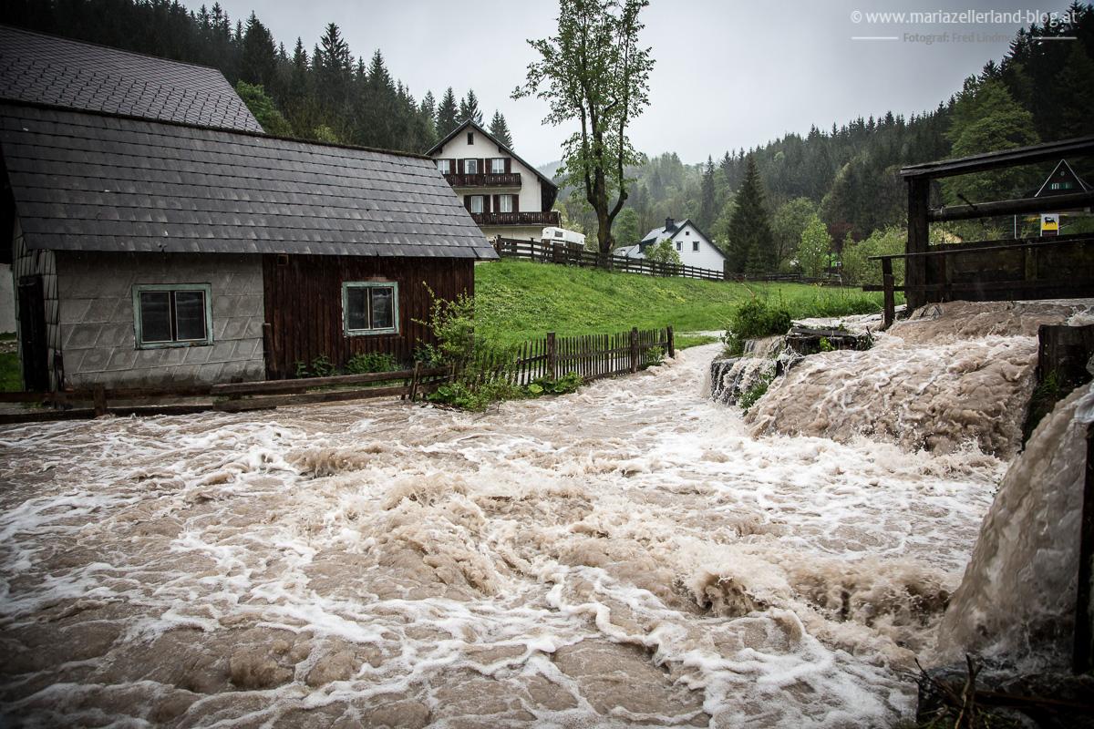 Hochwasser_Mai_2014_Mariazell_IMG_0928