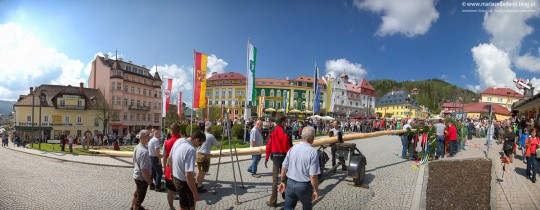 Maibaum-Mariazell-2014-Panorama