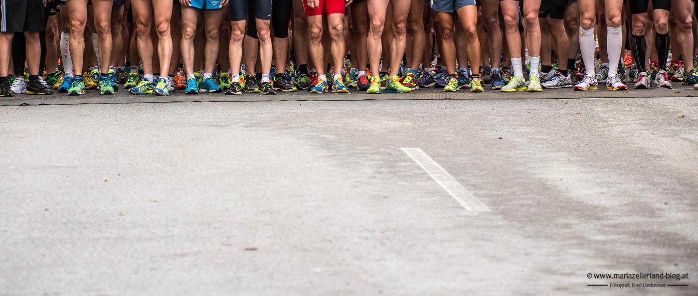 Night Run 2014 beim Erlaufsee - Startaufstellung