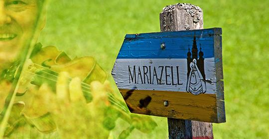 Mariazell_Musikantenwallfahrt_4126