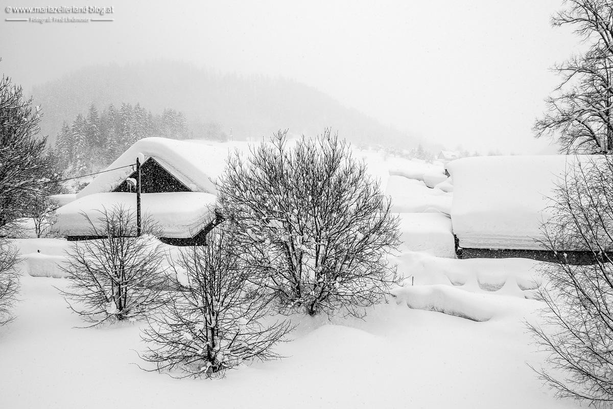 Schnee-Mariazell-Februar-2006-5577