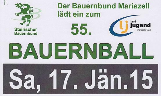 Bauernball-2015_