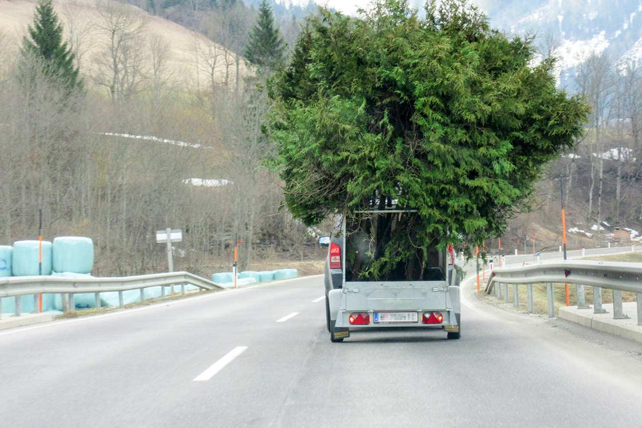 Auto-mit-Baumanhaenger
