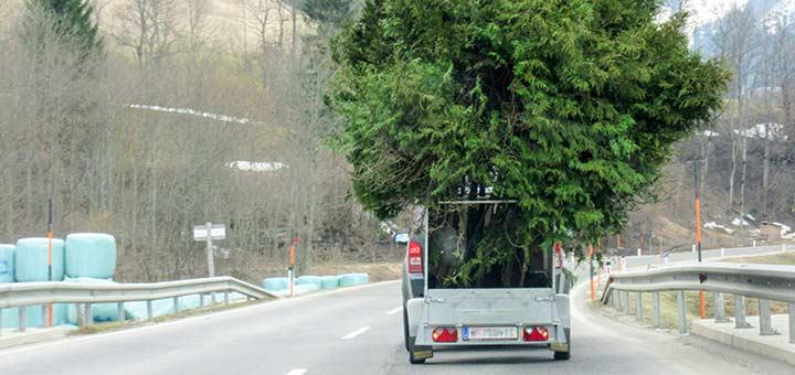 Auto-mit-Baumanhaenger_Titel