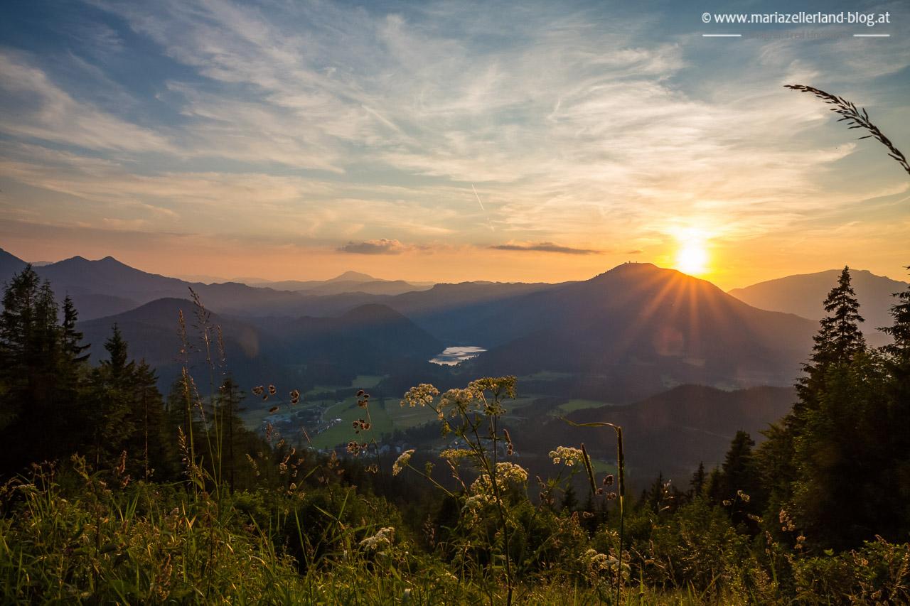Sonneuntergang_auf_der_Buergeralpe_IMG_4900__1