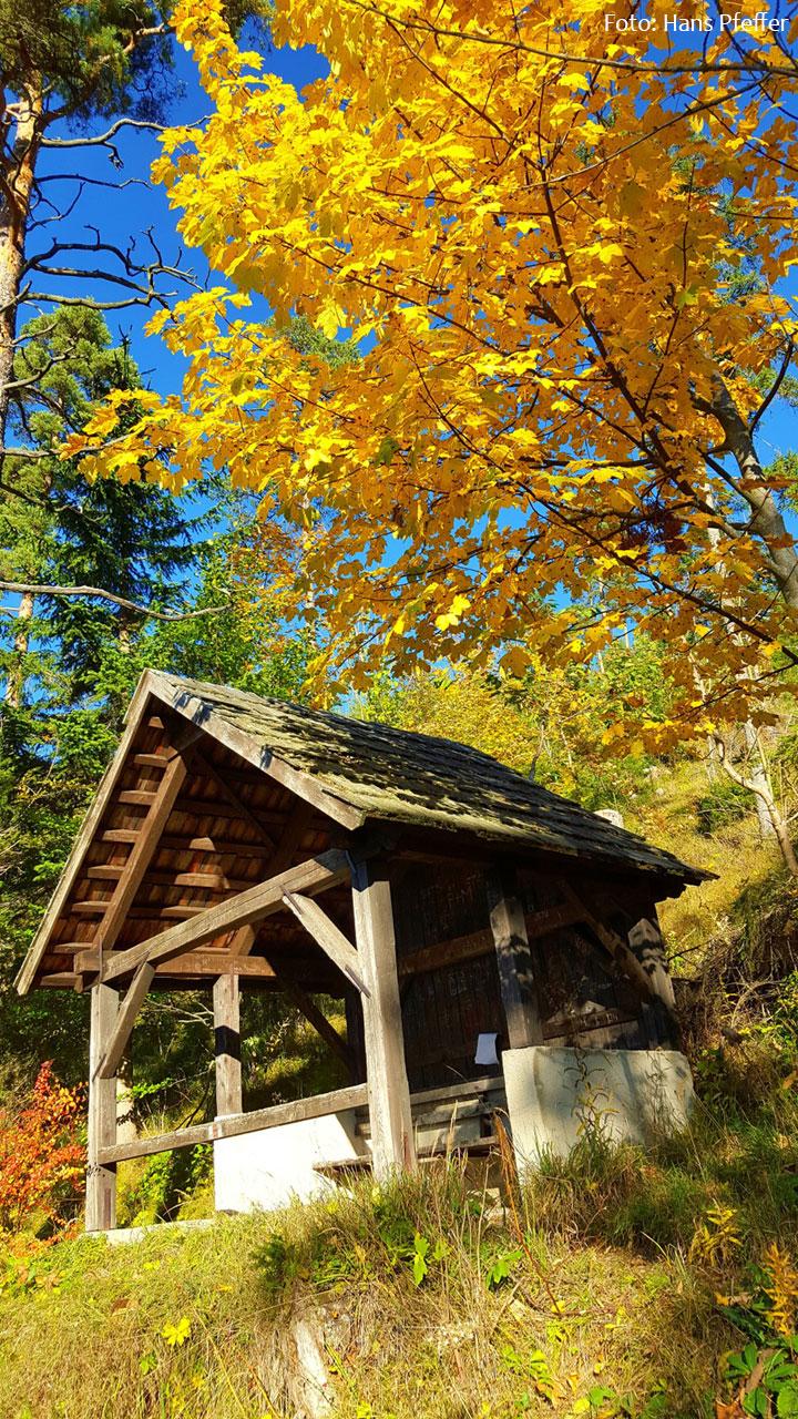 Herbst-Mariazellerland-Johann-Pfeffer_163350