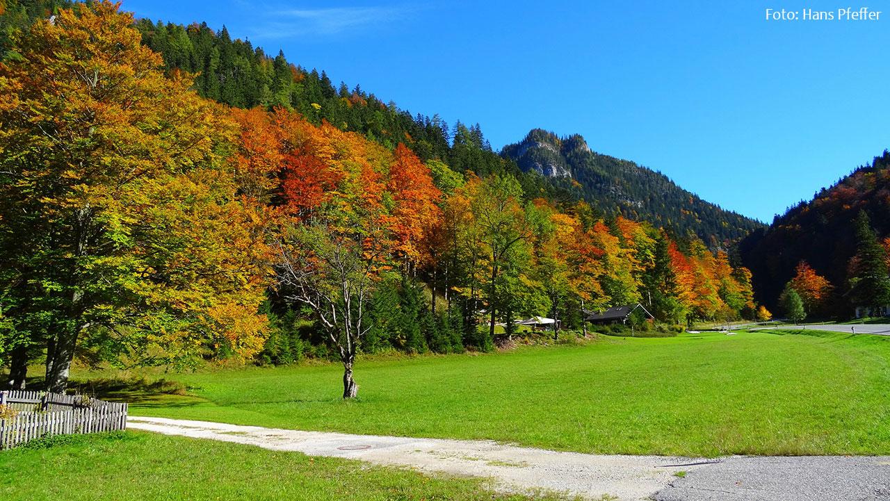 Herbst-Mariazellerland-Johann-Pfeffer_DSC00647-2