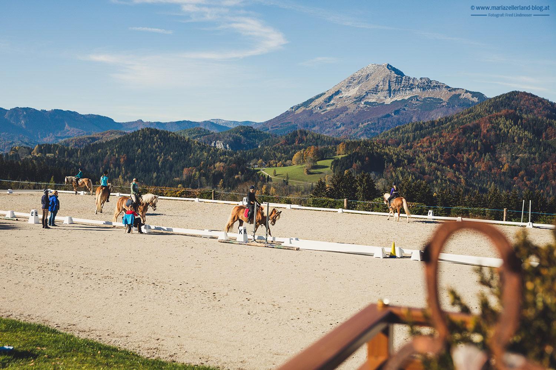 Jochis-Hoefe-Wanderung-Nationalfeiertag-Joachimsberg-0700