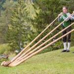 Weisenblasen am Hubertussee in der Walstern 2015 – Fotos