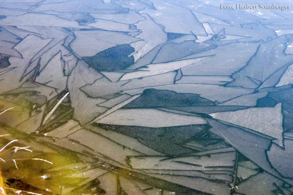 Eisbildung-Herbert-Sonnberger_P1010023