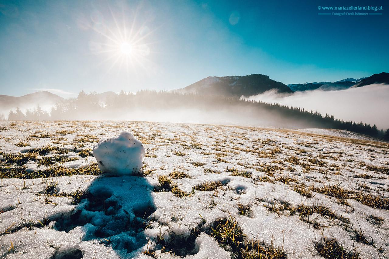 Mariazell-Winter-Nebel-Basilika-