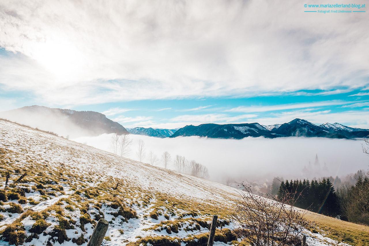 Mariazell-Winter-Nebel-Basilika-8242