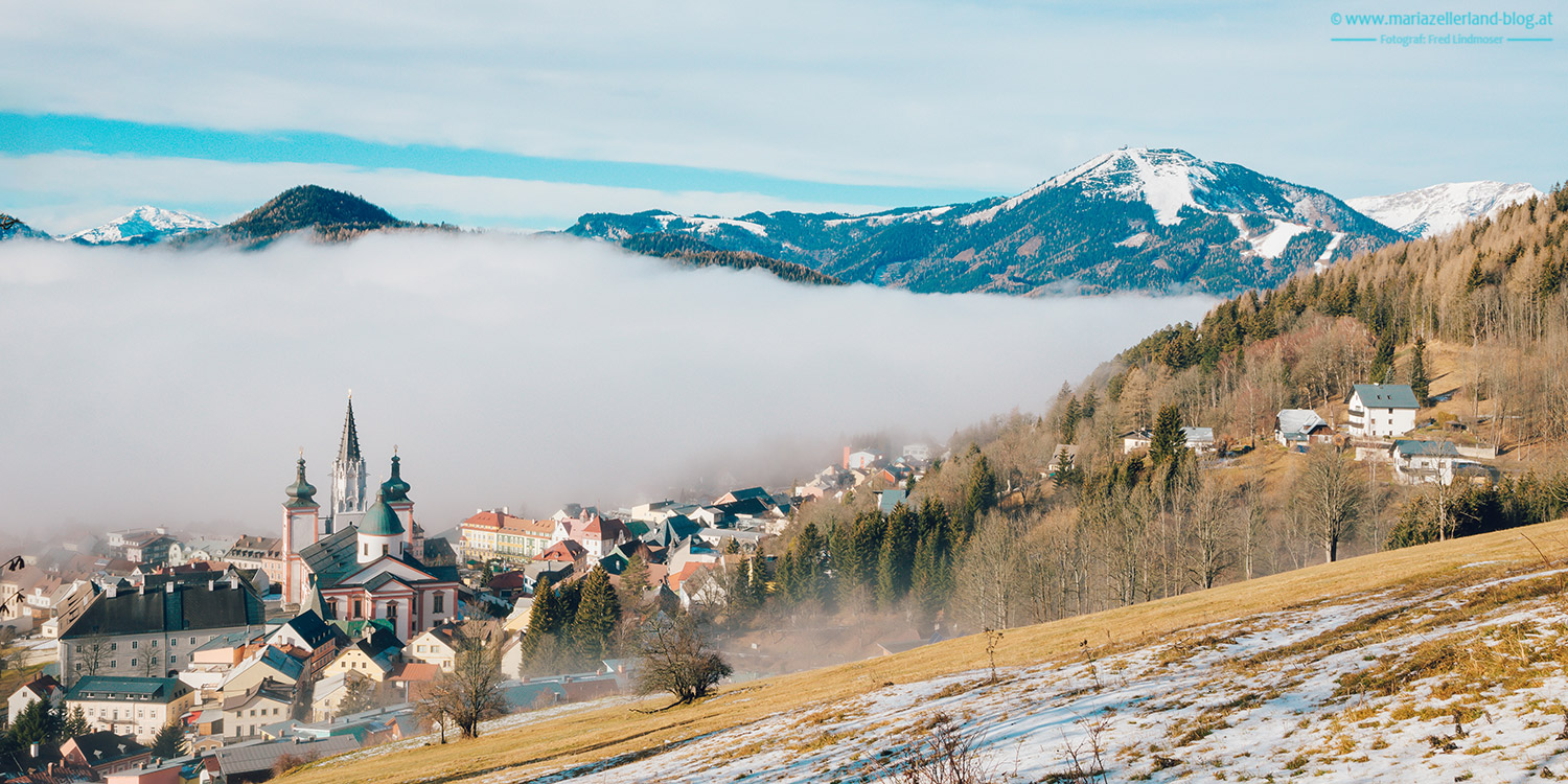 Mariazell-Winter-Nebel-Basilika_8218