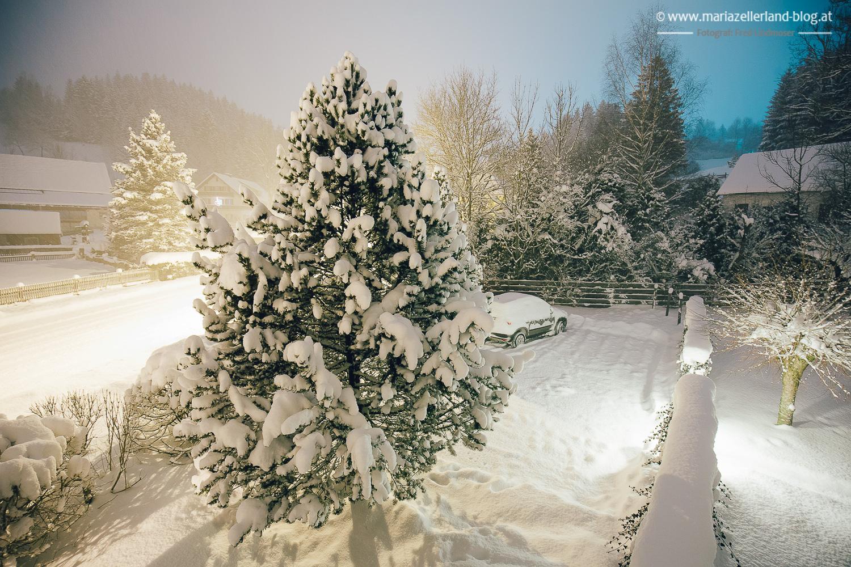 Winterlandschaft Mariazell 18012016-8310