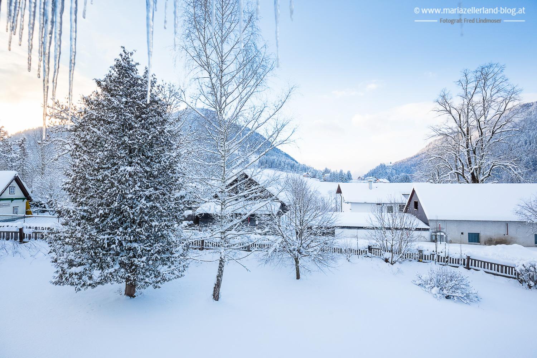 Winterlandschaft Mariazell 18012016-8312