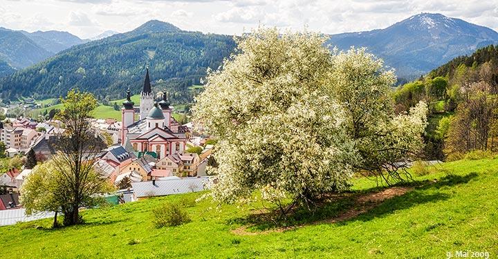 Mariazell-Basilika-Frühling
