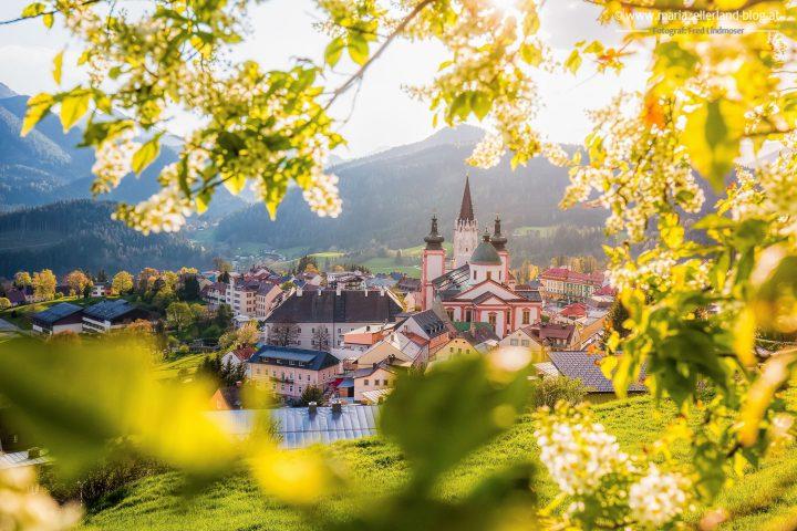 Basilika Mariazell-
