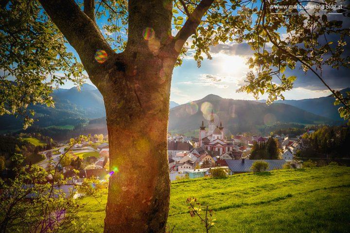 Basilika Mariazell Fruehling-