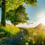 Bild der Woche: Sonnenuntergang am Erzherzog Johann Hügel