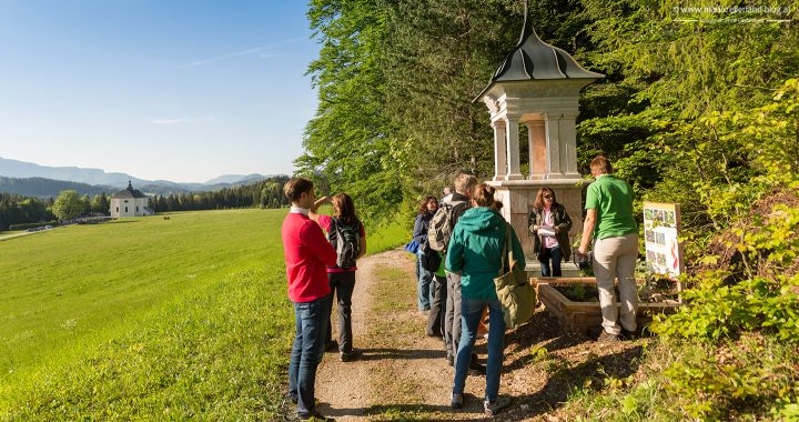 Heilende-Heilige-Wege-Mariazell-Kraueterpfad-IMG_1225-Panorama-1440