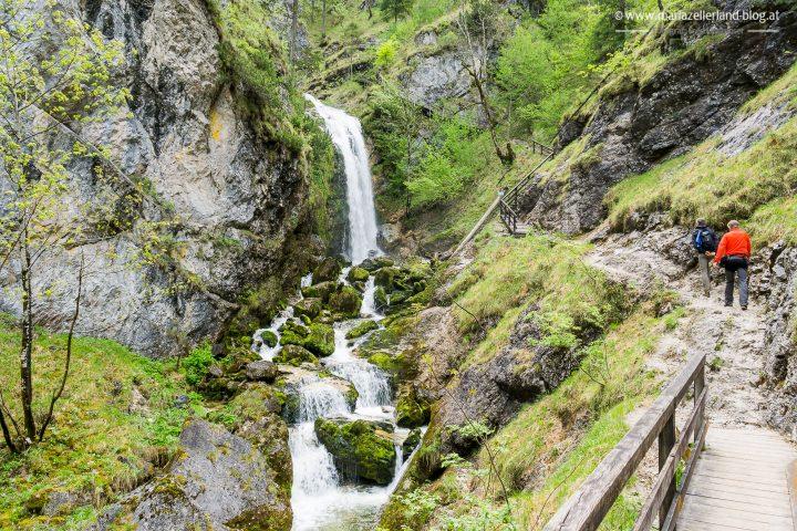 Wasserloch Palfau-02819