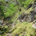 Wasserloch Klamm Palfau – Fotos