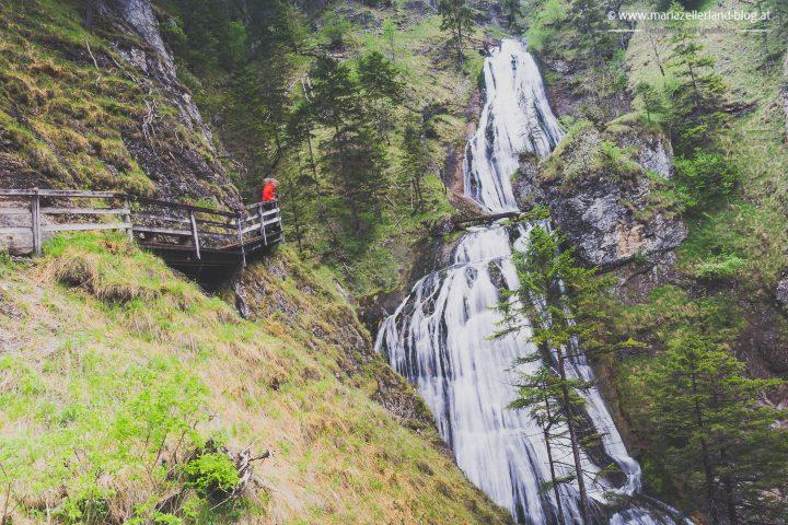 Wasserloch Palfau-02834