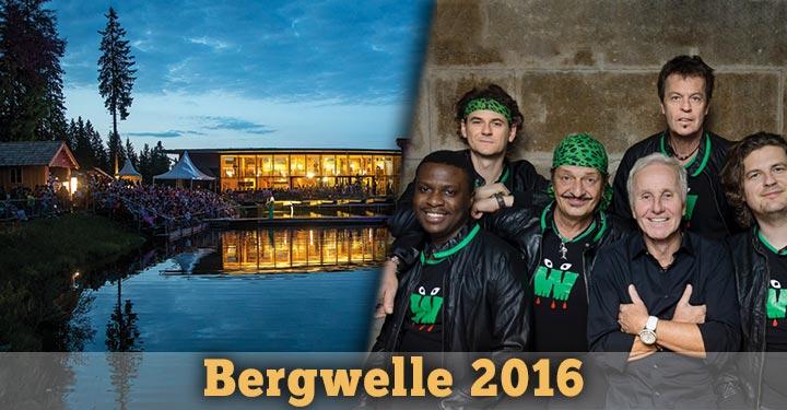 Bergwelle-2016