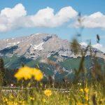 Bild der Woche: Ötscherblick in Mitterbach